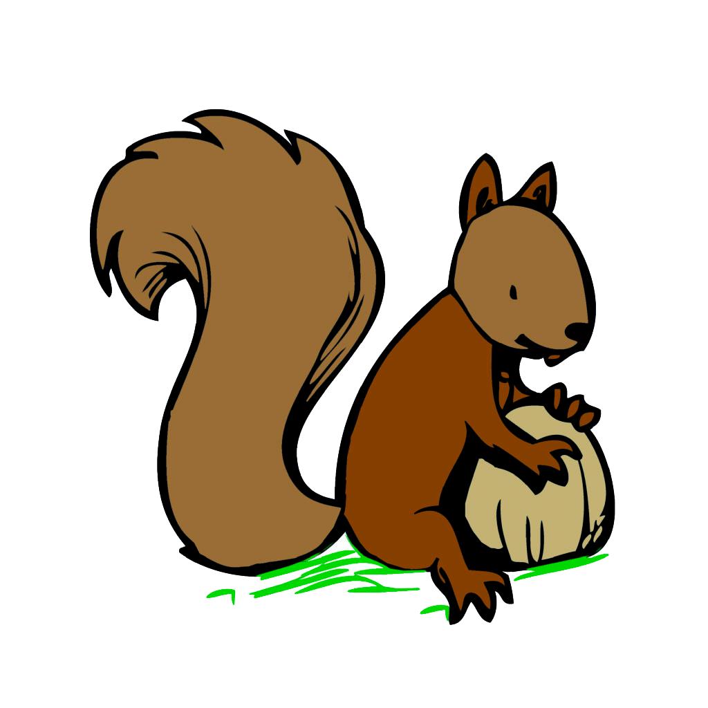 Eichhörnchengruppe